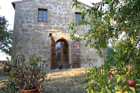 Casina Rosa - Apartment