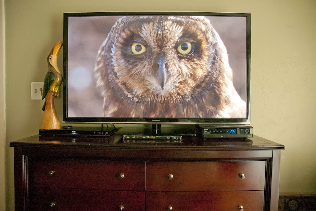 50 inch HD TV with HBO in Master.