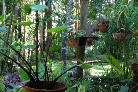 Paul's Hut @ Sang Tong Huts - Nature & Comfort - Pang Mu - Hut