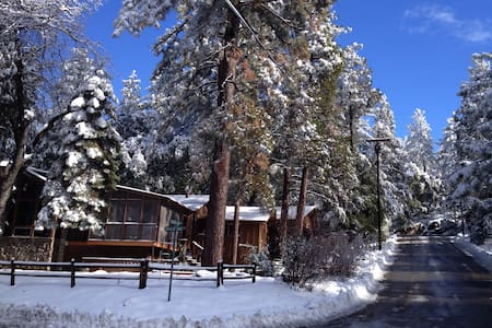 Steller Lodge - Idyllwild-Pine Cove - House
