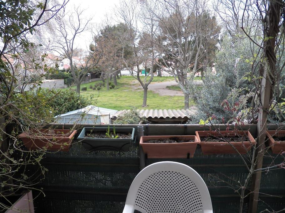 Grande terrasse avec vue sur le parc