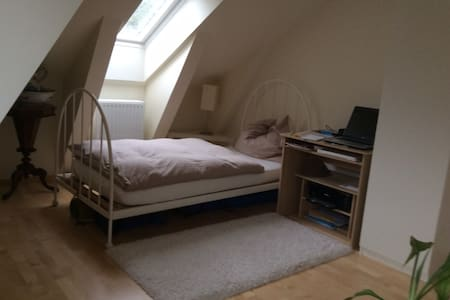 Room in roof top flat - Daire