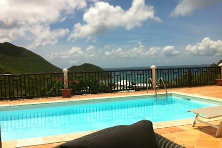 Villa à Anse Marcel avec piscine, vue mer et plage - Huis