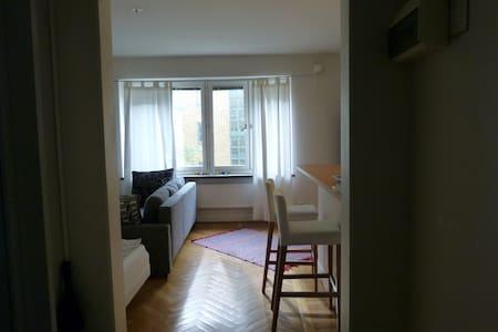 Studio Apartment In Gothenburg City