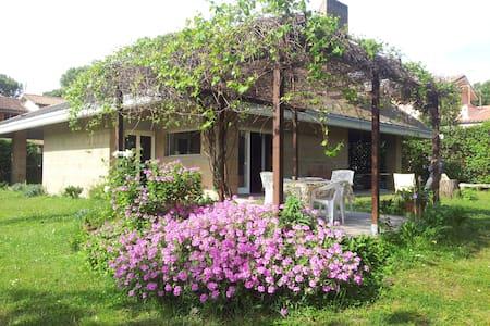 Beautiful villa with large garden - Villa