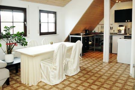 ! Cozy rooms, fully equipp kitchen  - Nürtingen - Apartment