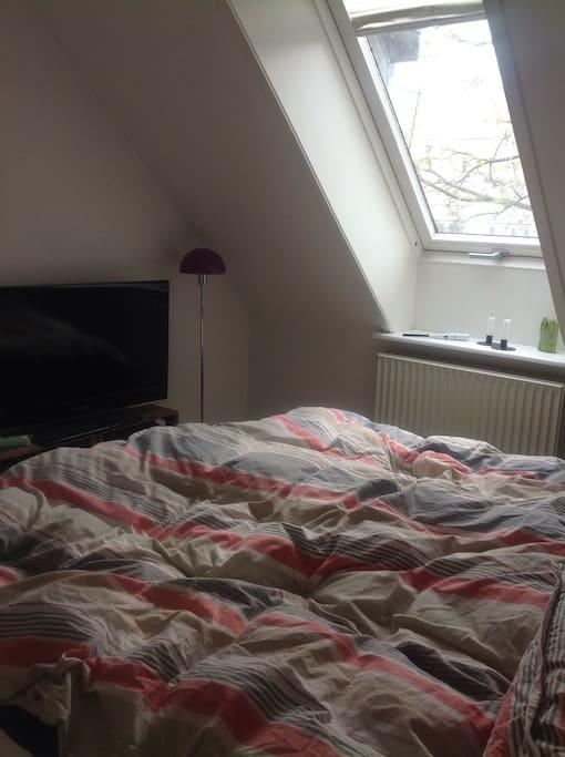 2. Vær. lejlighed i Odense gågade