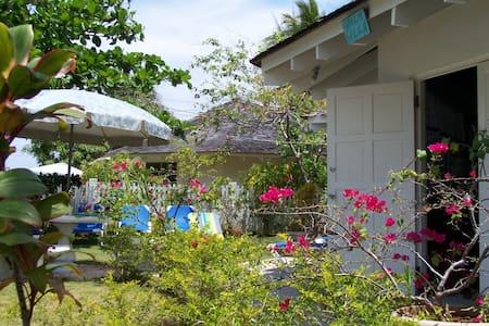 Palm Villa - Duncans Bay, Trelawny  - Villa