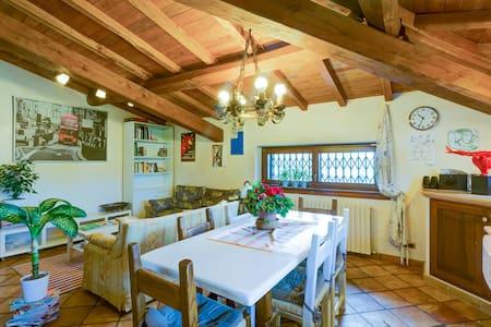 splendid room in villa near Rome - House