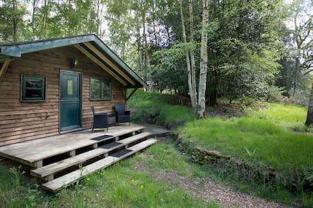 Surrey Hills Woodland Cabin  - Sommerhus/hytte