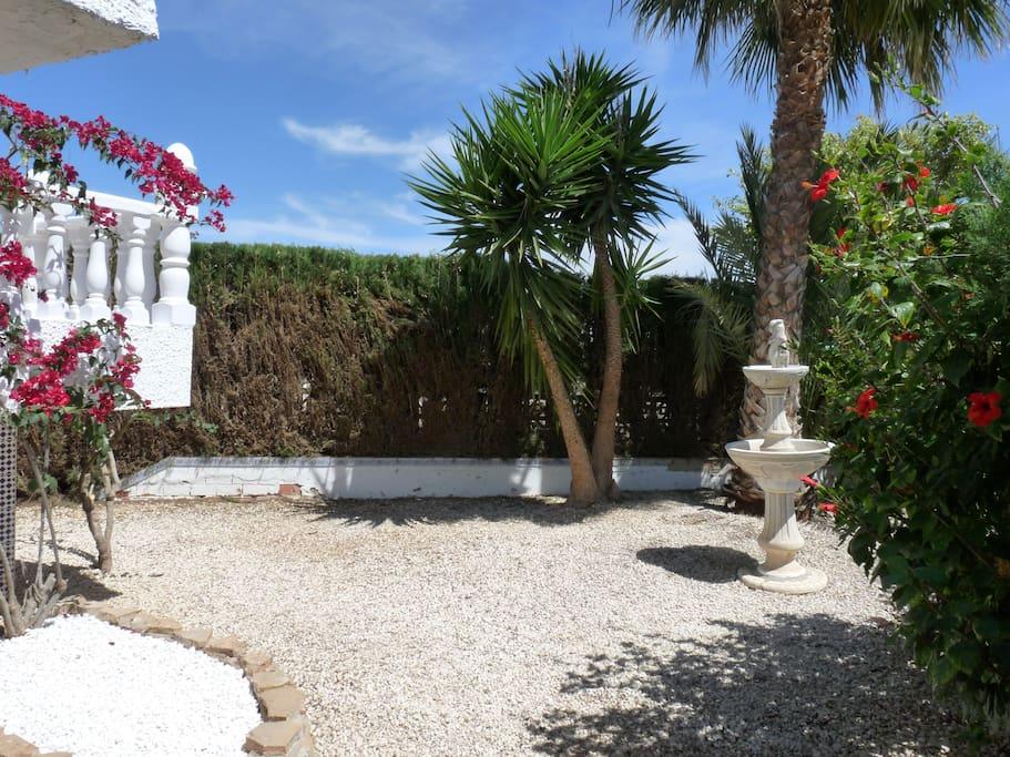 Beautiful Mediterranean Garden!