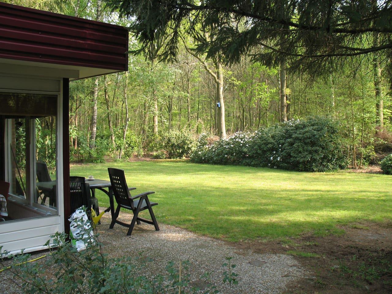 Bosbungalow aan de bosrand - Zomerhuisjes/cottages te Huur in Koekange