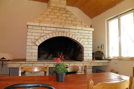 "Dalmatian house ""Nela"" Pridraga  - House"