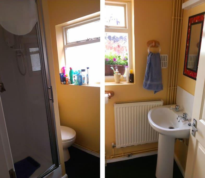 Guest shower room/WC on ground floor