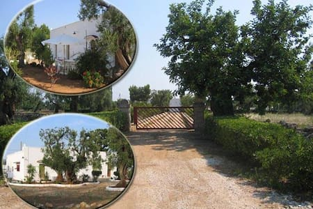 Masseria typical CountryHouse - Fasano - Villa