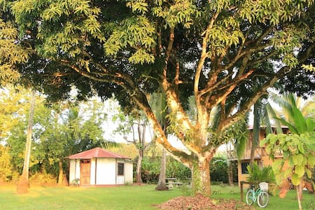Olguita's Place - Octagonal Cabin