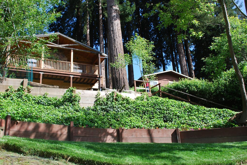 Two-tiered lawns leading to the river. Pick your spot and jump in the river!