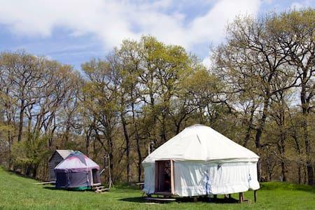 Two Welsh yurts - Iurta
