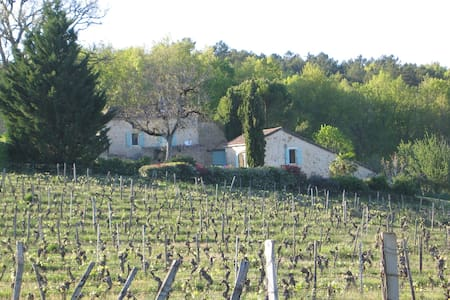 Cottage surrouded by vineyards. - House