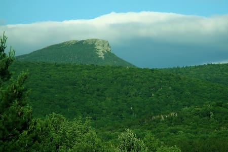 View of Camels Hump  - Huntington