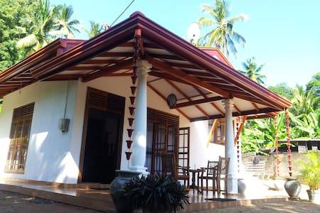 Oriental Villa - House