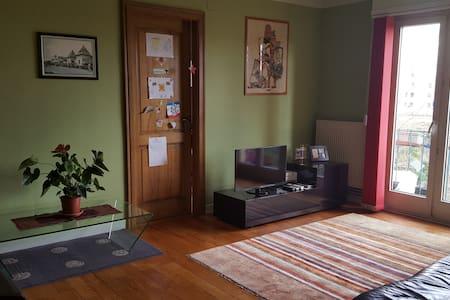 Appartement 4 pièces à Strasbourg - Lägenhet