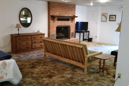 Spacious one bedroom near airport. - Hollins - Other