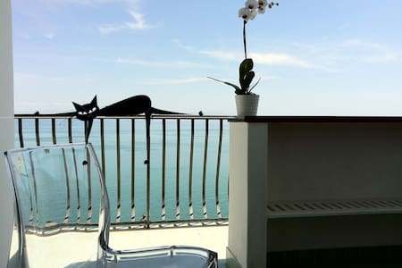 Camera Martida sul Mediterraneo - Other