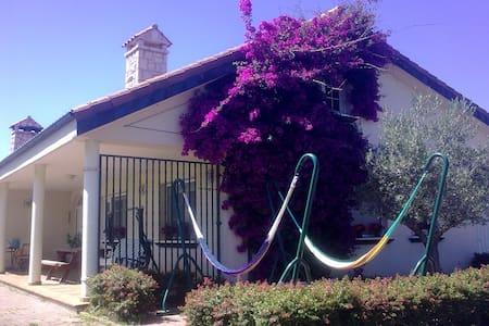 Luminosa y amplia habitación doble - Cantabria - Casa