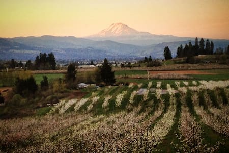 Mt. Adams View Sweet Retreat Rm #2 - Hood River - Huis