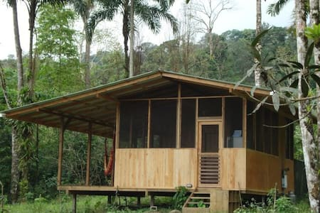 Howler Monkey Jungle Hideaway! - Zomerhuis/Cottage