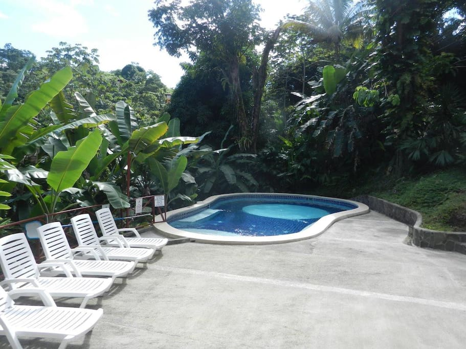 2BR/1BA Apt. in Paradise! 750ft²