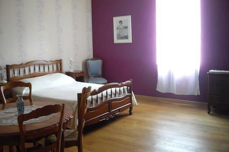 Chambre dans maison de maitre - Monclar-de-Quercy