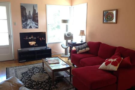 Beautiful 1940s house in a residential area of Hollywood.  A mile south of Sunset Blvd, a 20 min walk to the heart of Hollywood, a five min cab ride.  2 bedrooms/1 bath, kitchen, living room, balcony, garage, laundry.
