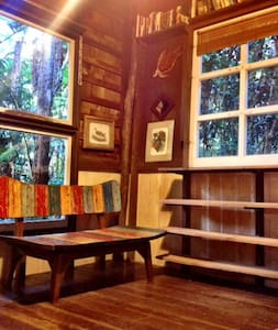 Rain forest cabin minutes from Park