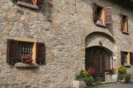 An Appartment In A Green Enviroment - Vezzano Sul Crostolo - Apartment