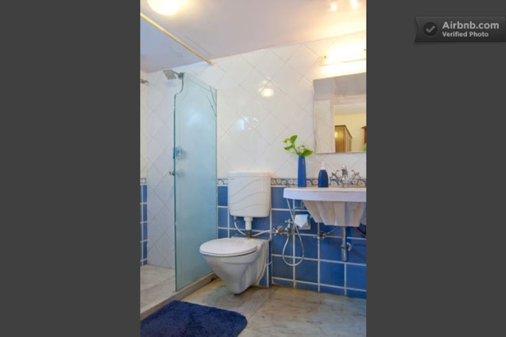 Attached private master bath, with shower enclosure and sink