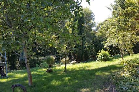Ferien im Pfälzer Wald - House