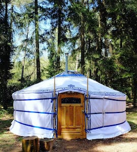 Back to basic Ger (Yurt) at Nature-camping site - Renkum