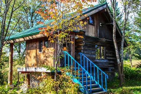 Niseko Log house stay - House