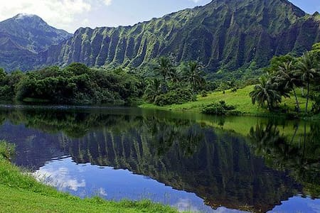 Spacious Hawaiian Hale Minutes from Kailua Beach - Kaneohe - Apartment