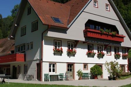 Wohnung im 1763 erbauten Bauernhof - Schenkenzell - Wohnung