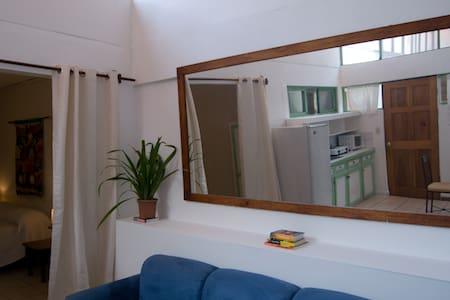 Practical apartment in Escazu