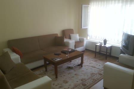 Cozy room w/the great location - Ancara - Casa