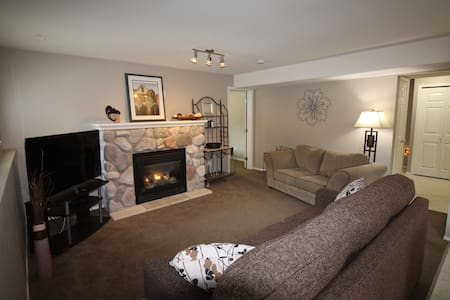 Upscale, clean, quiet, self contained 2 Br suite. - Apartment