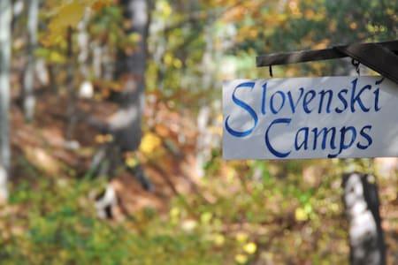 Summer Camp Cabin on a Lake: Camelot - Kisház
