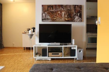 Très grand appartement au calme - Meyrin - Appartement