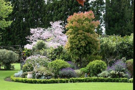 Bright Room With a Garden Surprise - Kerikeri