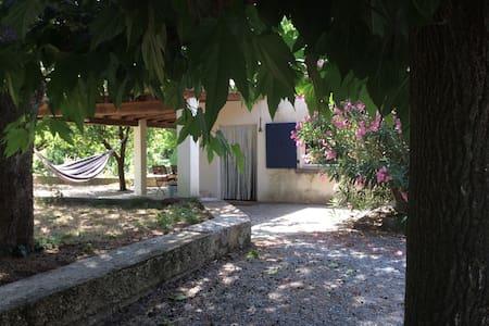 Oase in wandelgebied - Saint-Hippolyte-du-Fort - Cabane