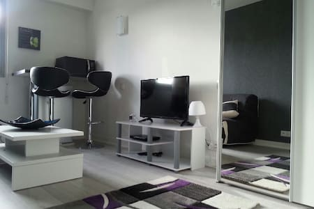 Studio Cannes centre - Cannes - Apartment